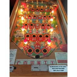 Bally County Fair 1959 Playfield